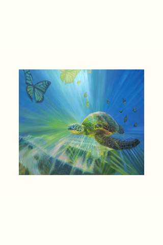 """""""Turtle Transformation"""" 10 x 12"""" Giclee print by Suzanne Daley"""