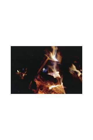 """""""Fire Light"""" by Miles Parenteau"""