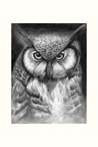 """Owl"" 9 x 12"" Giclee print by Kaylene Striker"
