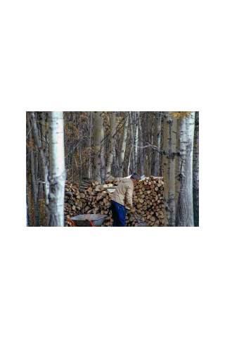 """Lost Father"" by Miles Parenteau"