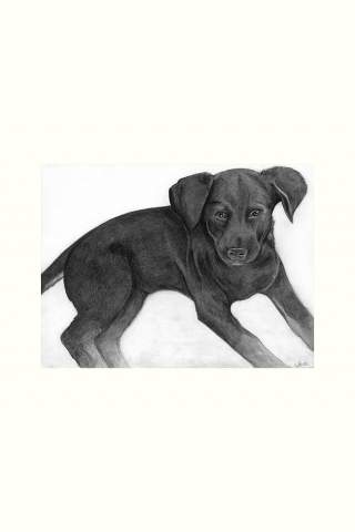 """Puppy"" 9 x 12"" Giclee print by Kaylene Striker"