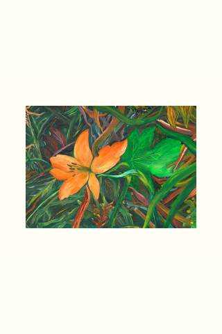 """""""Forest Floor"""" 12 x 18"""" Giclee print by Miles Parenteau"""