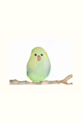 """Little Green Bird"" 8 x 10"" Giclee print by Jen Shaw"