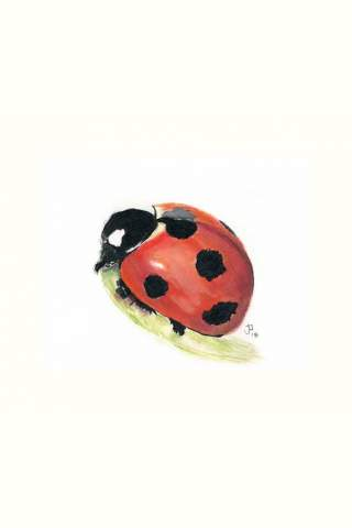 """Big Red"" 8 x 10"" Giclee print by Jason Petkau"