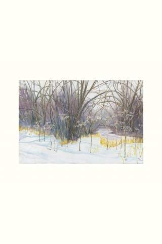 """""""Winter Flowers"""" 16 x 24"""" Giclee canvas print by Wendy Twin"""