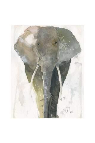 """Elephant"" 8 x 10"" Giclee print by Jason Petkau"