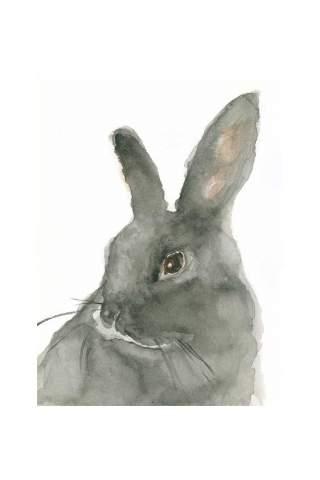 """Rabbitship"" 8 x10"" Giclee print by Jen Shaw"